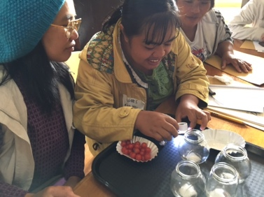 Participants dissect seeds
