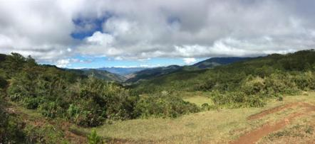 The pano view on top of Mt. Ampacao